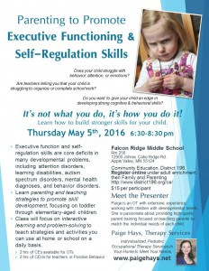 Parenting to promote executive functioning and self-regulation skills, Apple Valley, MN